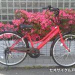 サカモトテクノ/266マグナス(限定カラー)